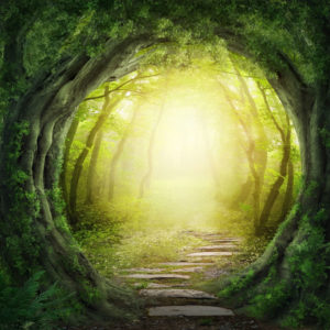 Past Life Regression Dallas, Houston, New Orleans